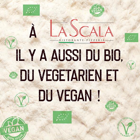 bio vege vegan